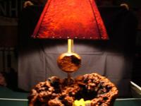 Manzanita Burl Lamps/Manzanita Lamp Shades  Lamps are