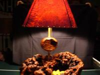 Manzanita Burl Lamps/Manzanita Lamp Shades.  Lamps are