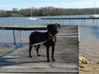 Maria is a petite, 5 year old, 40lb,