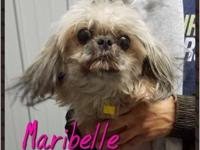 Maribelle's story Description of pet Maribelle is a