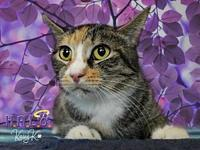 Marilyn's story * I am very relaxed and affectionate