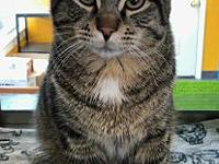 Marshall's story Marshall is a playful gentleman in a