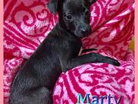 Marty's story Hi friends my name is Marty and I am a 3