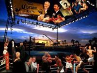 I am selling my massive collection of boxing fights on