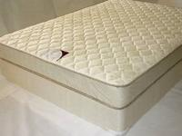 twin mattresses no box springs to them, also have