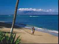 This package is for 4 people flying from SLC to Maui on