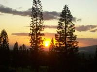 DELUXE OCEAN VIEW, 1BED/2BATH CONDO, SLEEPS 5, MAUI