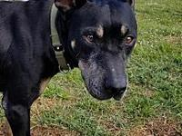 Maybelle's story Maybelle is a sweet senior girl who is