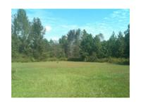 ***Reduced*** 1 acre tract of land at 4105 4TH ST,