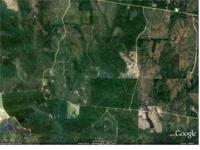 40 Acre of Land off E. McHenry Rd, Private Secluded and