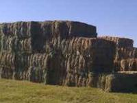 Meadow Hay for sale 140 per ton. Will deliver,  call