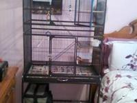 Green Vein colored bird cage, couple years old, in