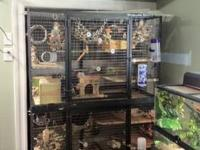 "I HAVE 6 CAGES FOR SALE. THEIR MEASUREMENTS ARE 30"" X"