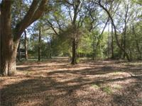 Grandaddy Live Oaks laced with Spanish Moss 5.7 acres