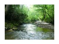 This 120 acre tract is located in Meridian, MS; it is