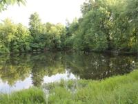 FOR SALE: 236+- acres located in Massac County just a