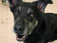 Micah's story FOSTERED IN: Chicago, IL 60608 AGE: 10