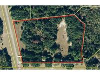 Old Florida living, 8.96 acres, could be a small farm