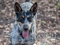 Michelle's story Michelle is available for foster or