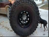 Mickey Thompson belted Baja's. 36x14.50 x16.5 on Black