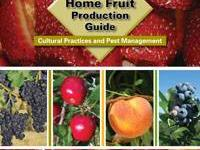 Midwest Home Fruit Production Guide -Soft cover Book