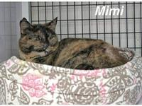 Mimi's story Our pets are spayed/neutered and current