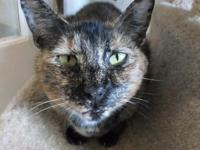 Mindy's story Mindy is a calm girl who likes to give