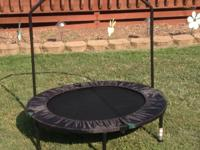 Mini trampoline w/safety bar.  Purchased at local