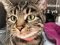 Minnie's story Meet Minnie. This 2 yr old girl is so
