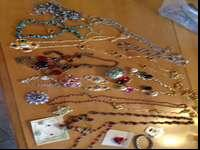 22 pieces of jewelry. Necklaces, pins, earrings. $15