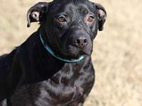 MITCHELL's story MEET MITCHELL! A 3 year old, male,