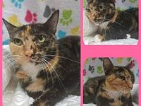 Mitzi's story Our adoption fee is 80.00 which covers