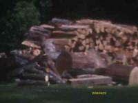 WE HAVE MIXED HARDWOOD FIREWOOD FOR SALE IT IS SEASONED