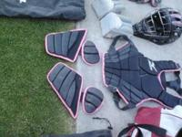Hello there i bought this catchers equipment for 400
