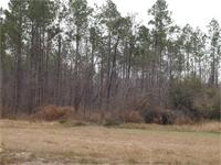 40+/- ACRES ON JACOBS LANE IN WEST MOBILE. This