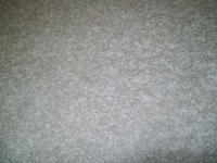 Beautiful Soft Mohawk Plush Carpet Lifetime Stain