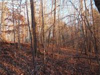 3.06 Acres in Beautiful Smith Large wooded parcel of