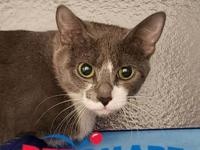 Monkey's story I am located at Janesville PetSmart! If