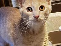My story Meet one of our newest arrivals, Monte! This
