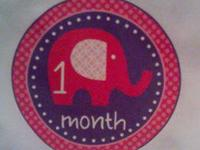 Monthly Onesie  Sets! I have owls, elephants, cupcakes