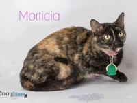Morticia's story With stunning grace, beauty and a