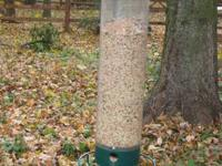 Motorized squirrel proof bird feeder! Birds love to eat