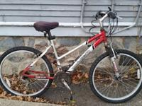 "Adult size mountain bike 28"" tires. Quite old ~10 years"
