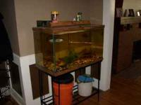 Up for sale 75 gal aquarium with stand, light, filter