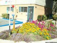 We have charming two bedroom apartments in a quiet and