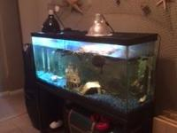 Animal Type: Fishes 55 gallon tank with stand, filter,