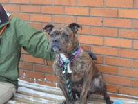 Moya's story !!!Not Currently Available for