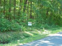 Wonderfully wooded structure lot with big wood, in