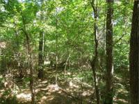 Magnificently wooded building lot with large wood, in