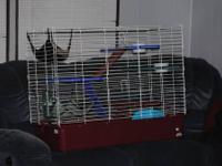 We have a large multi-level cage that we used for our